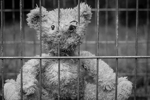 A sad teddy bear inside a jail