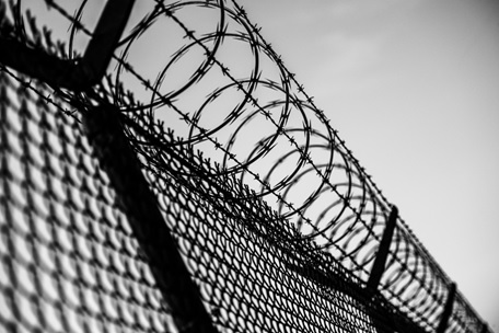 Barbed wire on a prison fence.